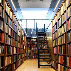 Библиотеки Чердыни